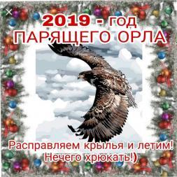 год_орла
