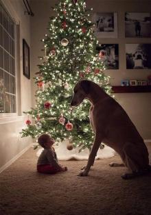 Я и мой Пёс