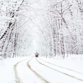 снег в Сокольниках